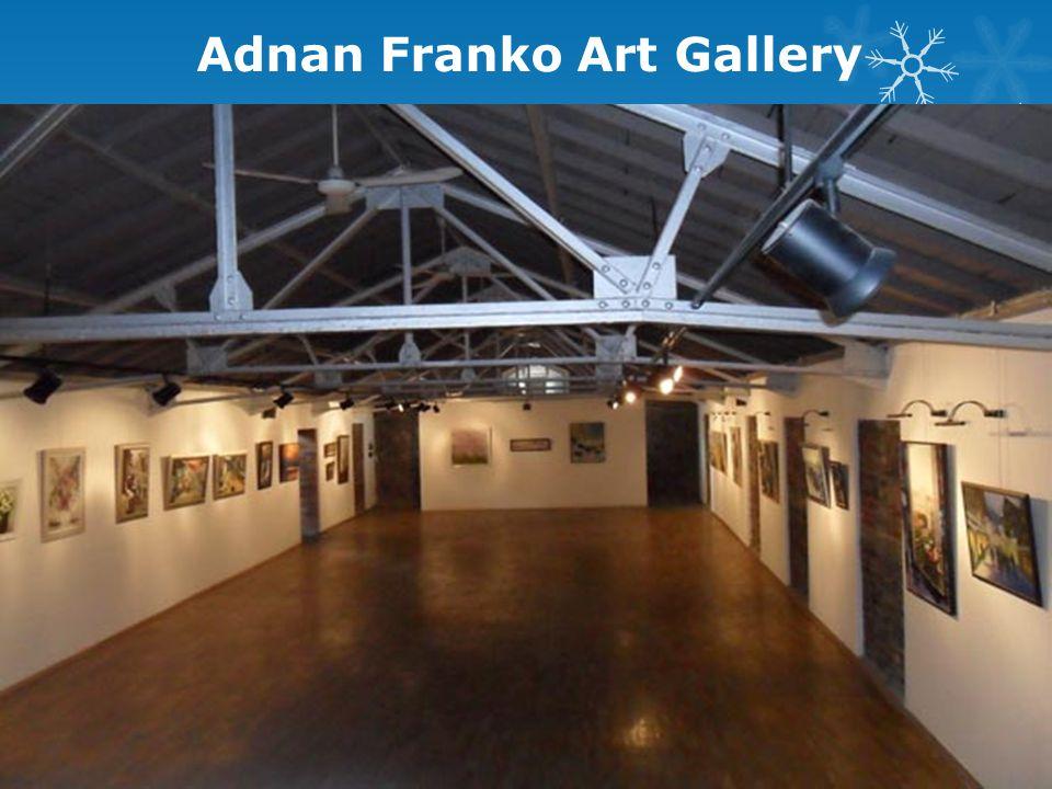 Adnan Franko Art Gallery