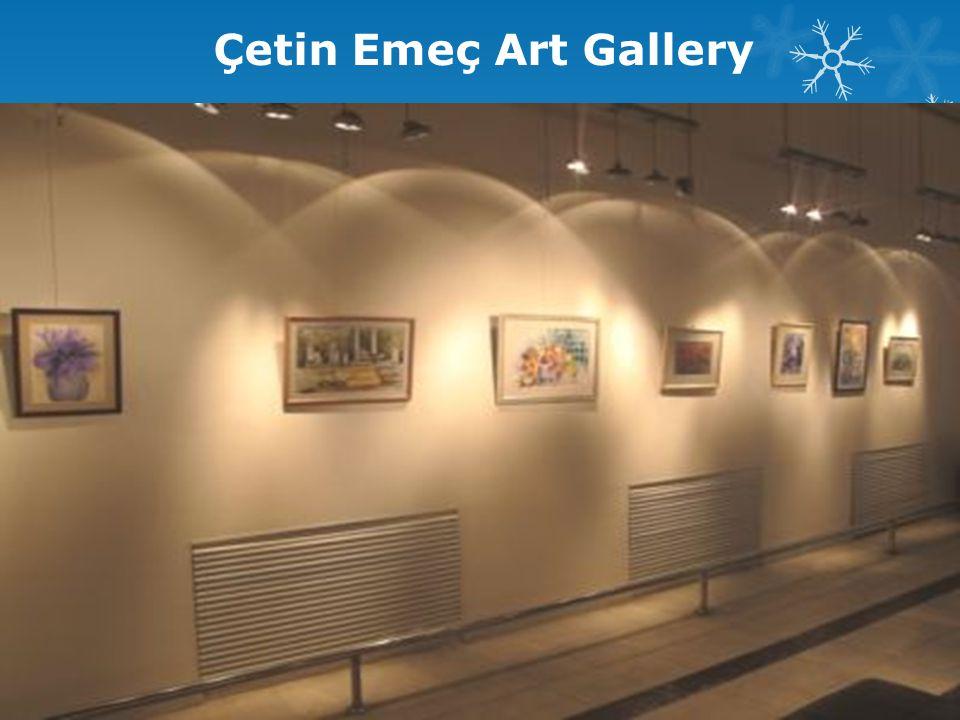 Çetin Emeç Art Gallery