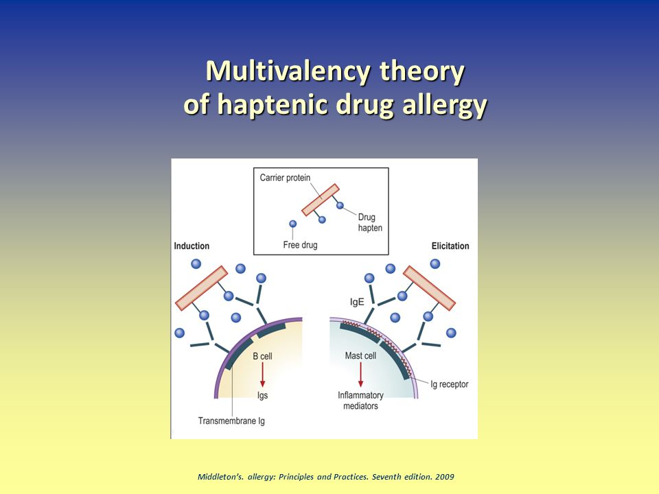 Middleton's. allergy: Principles and Practices. Seventh edition. 2009 Multivalency theory of haptenic drug allergy