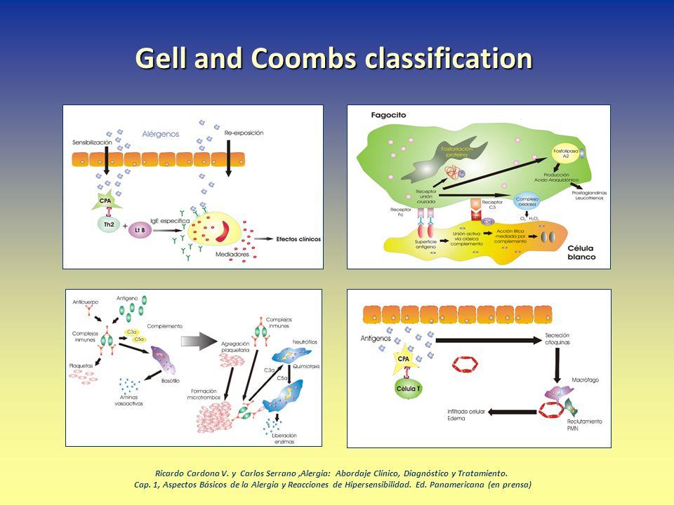 Gell and Coombs classification Ricardo Cardona V. y Carlos Serrano,Alergia: Abordaje Clínico, Diagnóstico y Tratamiento. Cap. 1, Aspectos Básicos de l
