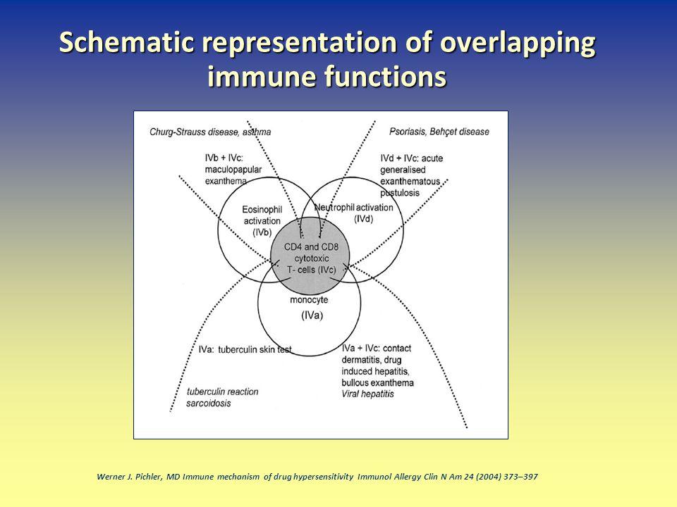 Werner J. Pichler, MD Immune mechanism of drug hypersensitivity Immunol Allergy Clin N Am 24 (2004) 373–397 Schematic representation of overlapping im