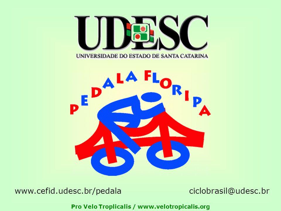 Pro Velo Troplicalis / www.velotropicalis.org ciclobrasil@udesc.brwww.cefid.udesc.br/pedala