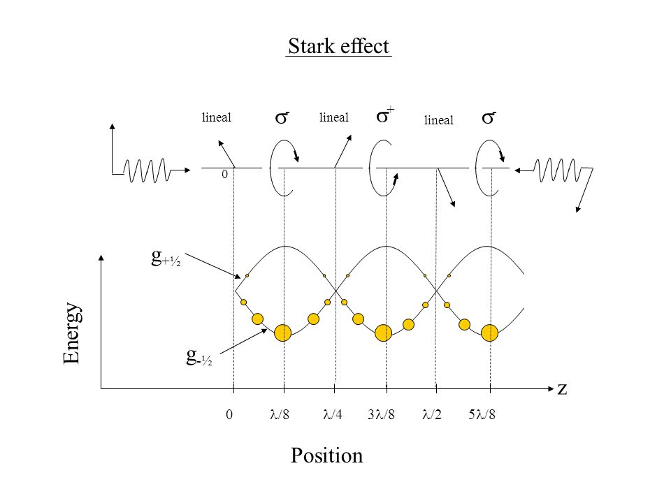Stark effect g-½g-½ g+½g+½ 0 lineal -- ++ -- Energy Position 88 z 0 443838 225858