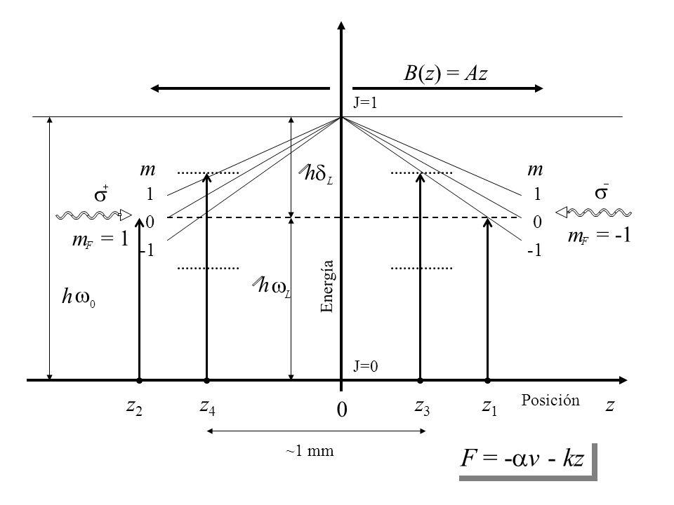 m 1 0 m 1 0   m F = -1   m F = 1 h  0 h  L h  L z 0 Energía B(z) = Az z2z2 z1z1 z3z3 z4z4 J=0 J=1 Posición ~1 mm F = -  v - kz