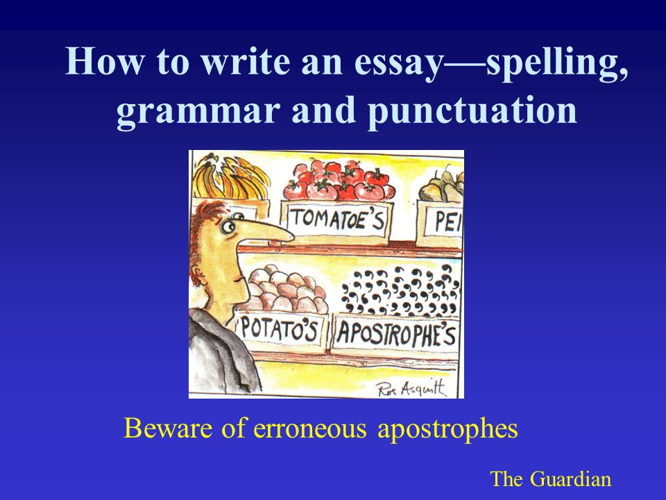 How to write an essay—spelling, grammar and punctuation Beware of erroneous apostrophes The Guardian