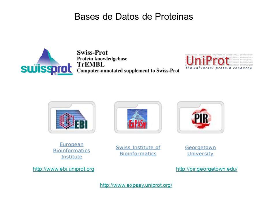 Bases de Datos de Proteinas http://www.ebi.uniprot.org http://www.expasy.uniprot.org/ http://pir.georgetown.edu/