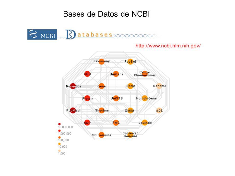 http://www.ncbi.nlm.nih.gov/ Bases de Datos de NCBI