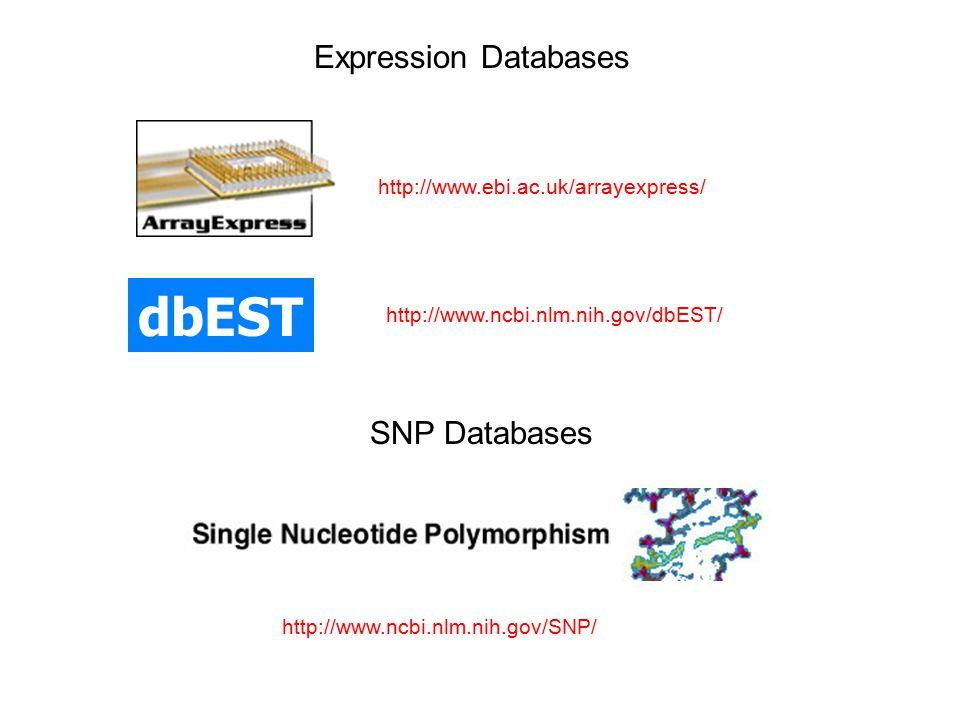 Expression Databases http://www.ebi.ac.uk/arrayexpress/ dbEST http://www.ncbi.nlm.nih.gov/dbEST/ http://www.ncbi.nlm.nih.gov/SNP/ SNP Databases