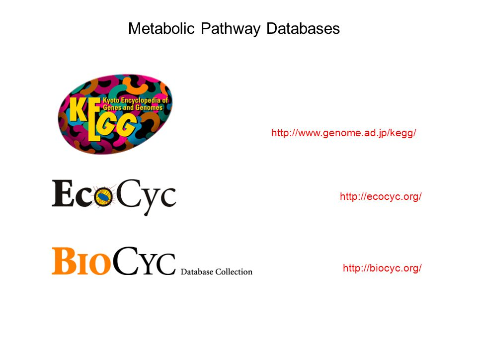 http://www.genome.ad.jp/kegg/ http://biocyc.org/ http://ecocyc.org/ Metabolic Pathway Databases