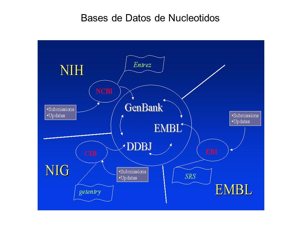Bases de Datos de Nucleotidos