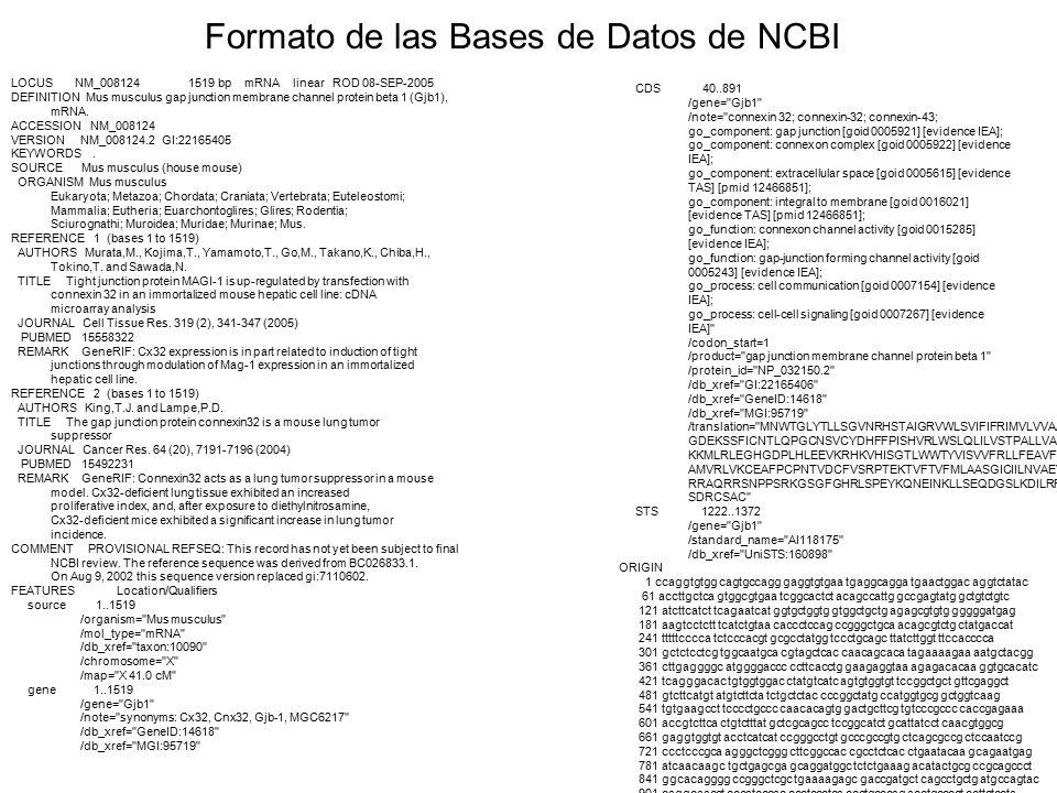 Formato de las Bases de Datos de NCBI LOCUS NM_008124 1519 bp mRNA linear ROD 08-SEP-2005 DEFINITION Mus musculus gap junction membrane channel protein beta 1 (Gjb1), mRNA.