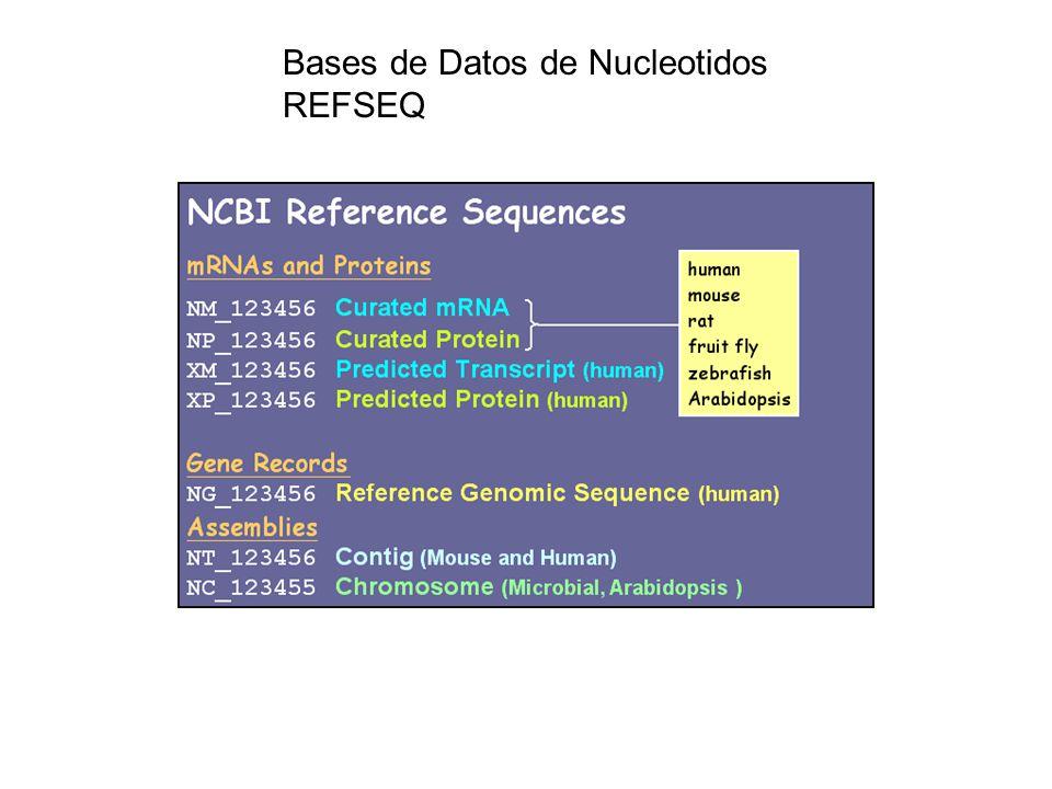 Bases de Datos de Nucleotidos REFSEQ
