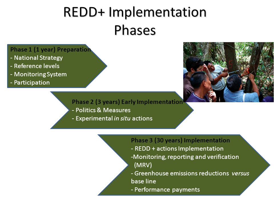 REDD+ Implementation Phases Phase 1 (1 year) Preparation - National Strategy - Reference levels - Monitoring System - Participation Phase 2 (3 years) Early Implementation - Politics & Measures - Experimental in situ actions Phase 3 (30 years) Implementation - REDD + actions Implementation -Monitoring, reporting and verification (MRV) - Greenhouse emissions reductions versus base line - Performance payments