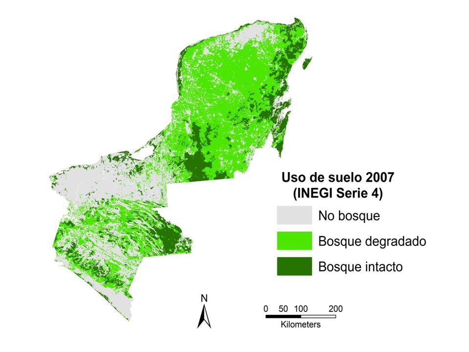 Flujos netos de CO 2 (en 10 3 t CO 2 /año) por cambio de uso de suelo