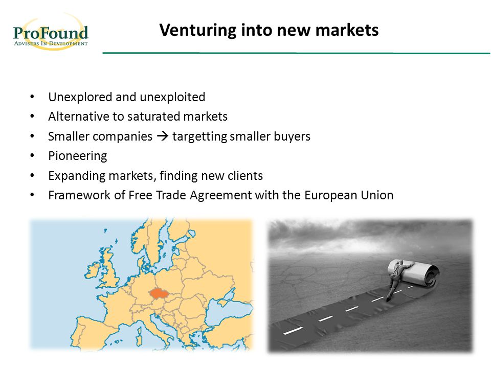 Unexplored and unexploited Alternative to saturated markets Smaller companies  targetting smaller buyers Pioneering Expanding markets, finding new clients Framework of Free Trade Agreement with the European Union Venturing into new markets