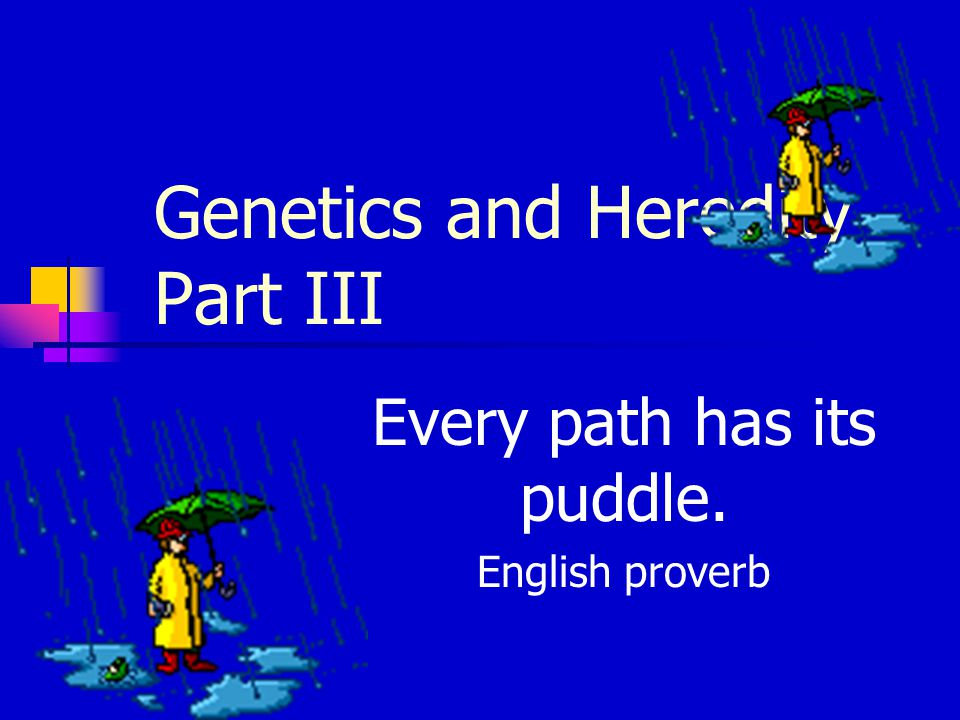 Genetics and Heredity Part III Every path has its puddle. English proverb