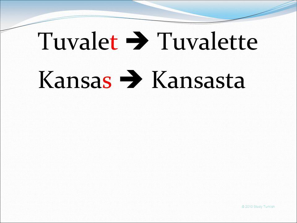 © 2010 Study Turkish Tuvalet  Tuvalette Kansas  Kansasta