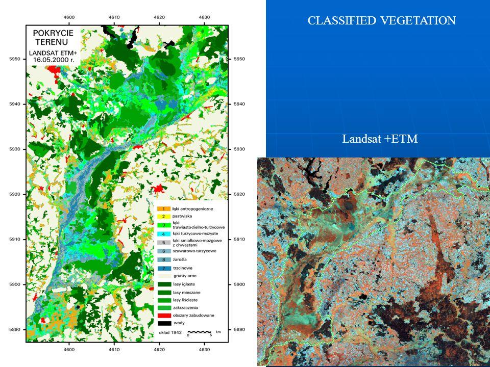 COPAL SEMINAR WARSZAWA 18.01.2008 Landsat +ETM CLASSIFIED VEGETATION