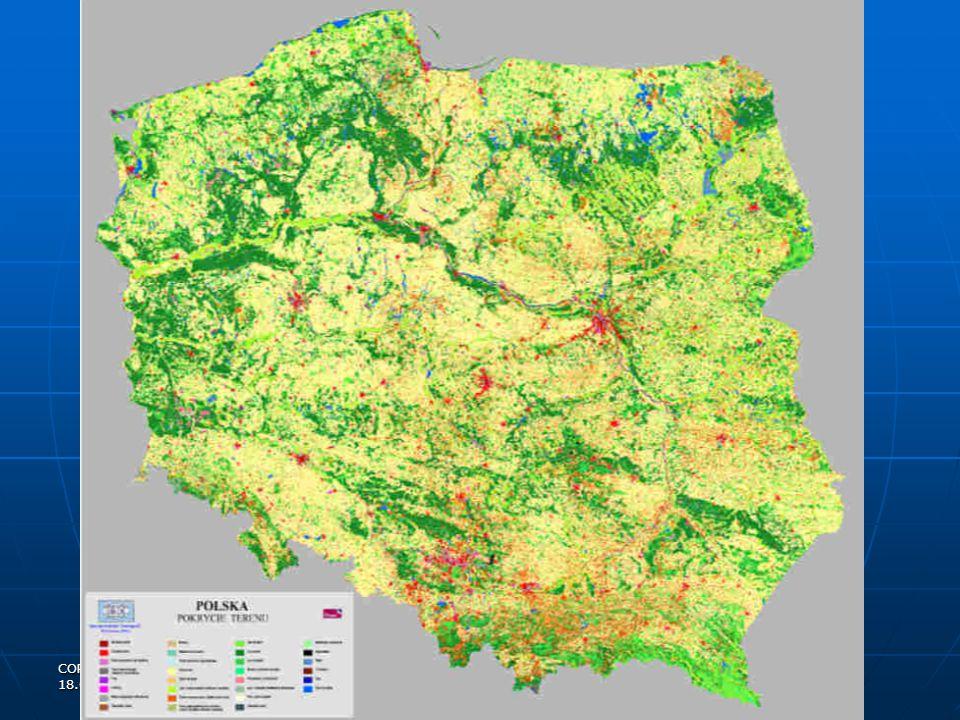 since 1995 area - 59223 ha