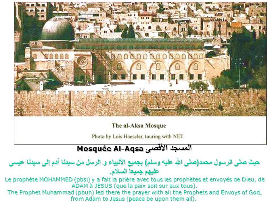 مسجد قبة الصخرة Mosquée du dôme du rocher Mosque of the dome of the rock