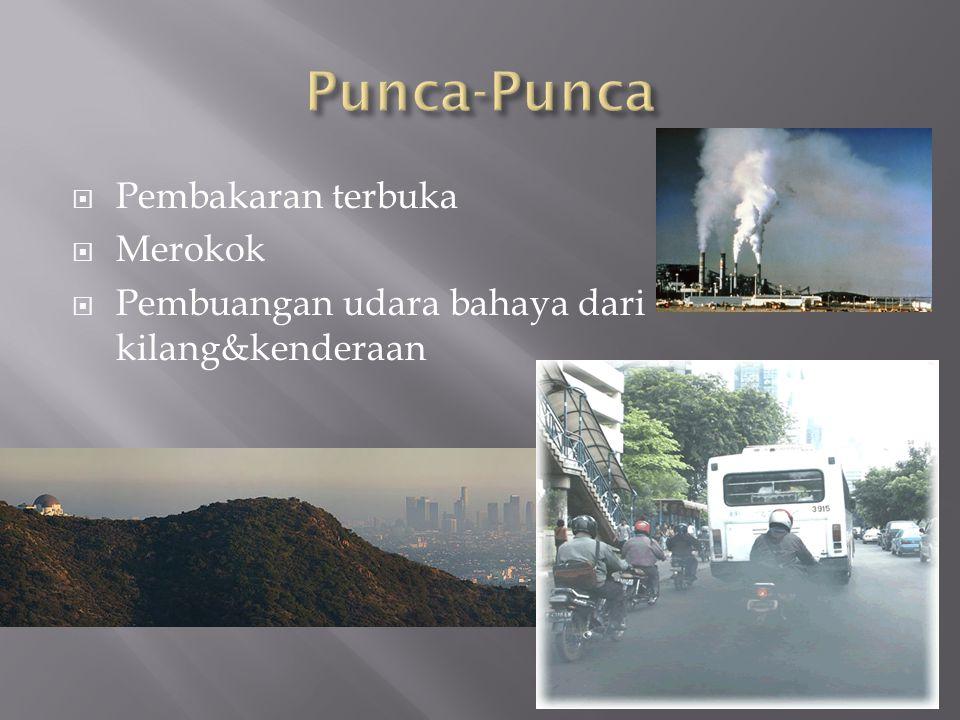  Pembakaran terbuka  Merokok  Pembuangan udara bahaya dari kilang&kenderaan