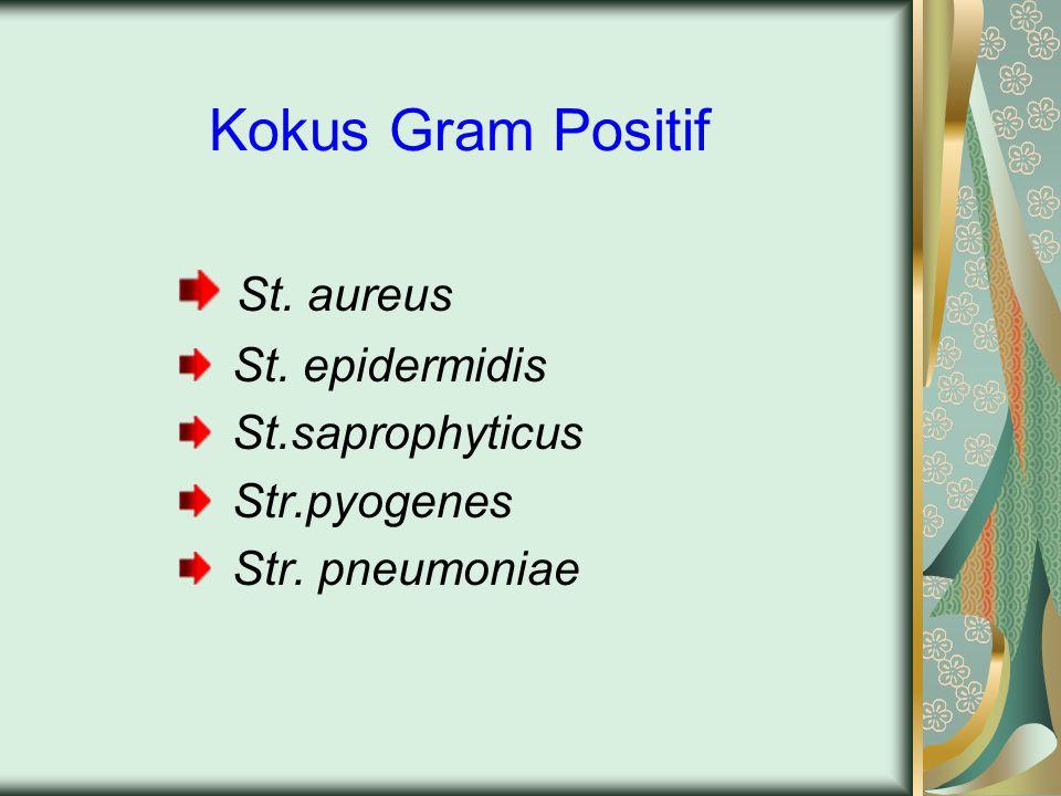 Kokus Gram Positif St. aureus St. epidermidis St.saprophyticus Str.pyogenes Str. pneumoniae