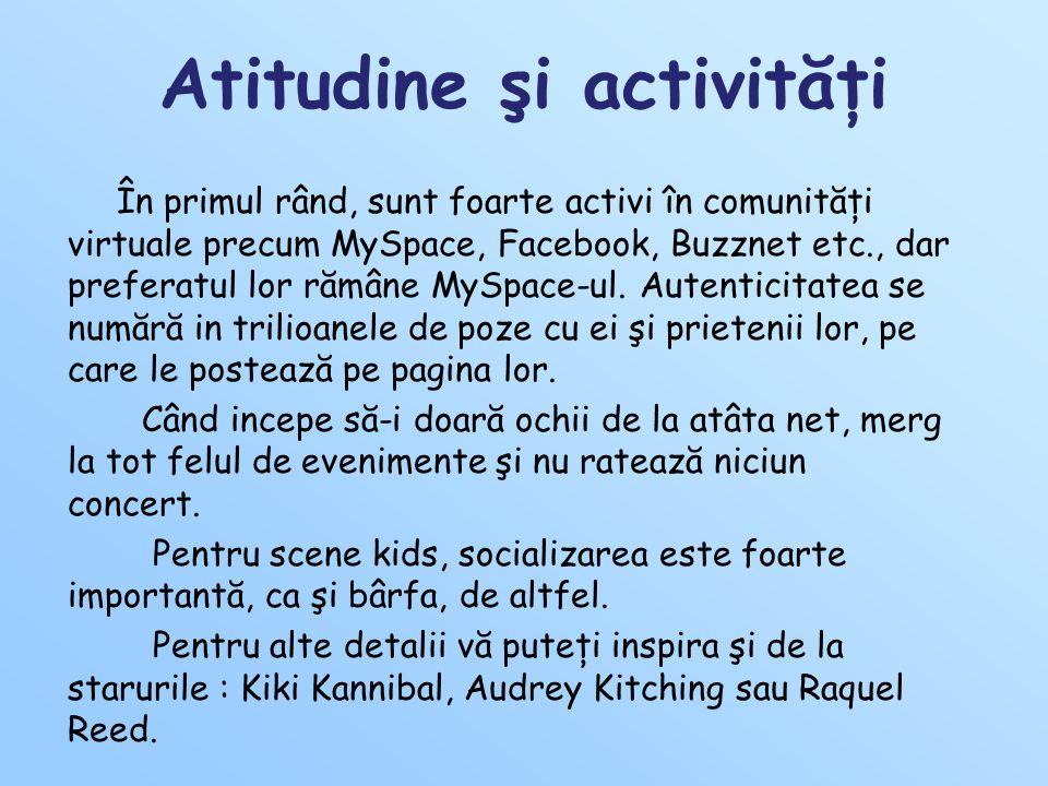Atitudine şi activităţi În primul rând, sunt foarte activi în comunităţi virtuale precum MySpace, Facebook, Buzznet etc., dar preferatul lor rămâne MySpace-ul.