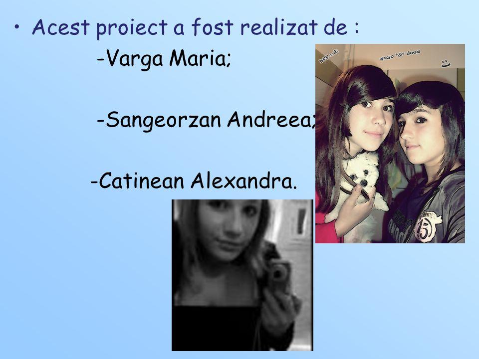 Acest proiect a fost realizat de : -Varga Maria; -Sangeorzan Andreea; -Catinean Alexandra.