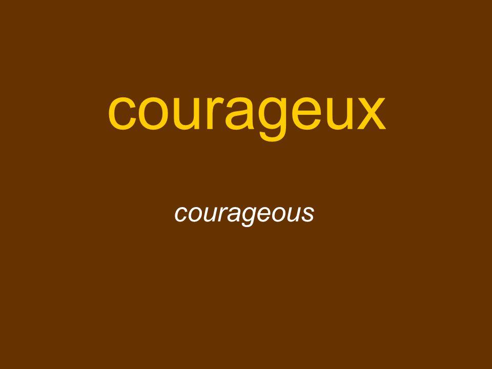 courageux courageous