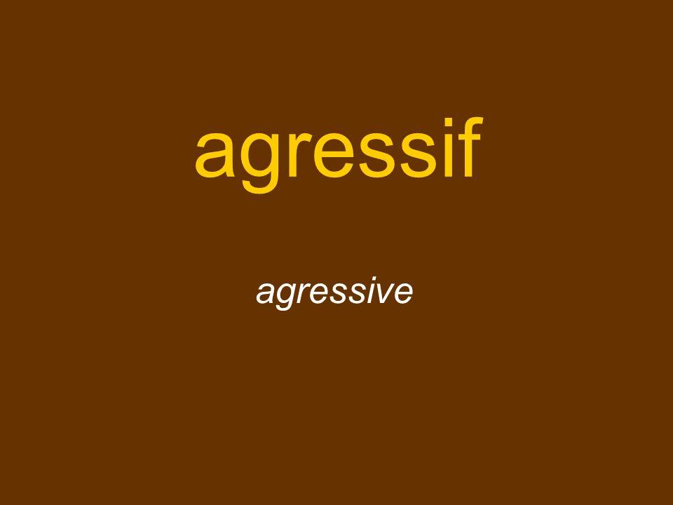 agressif agressive