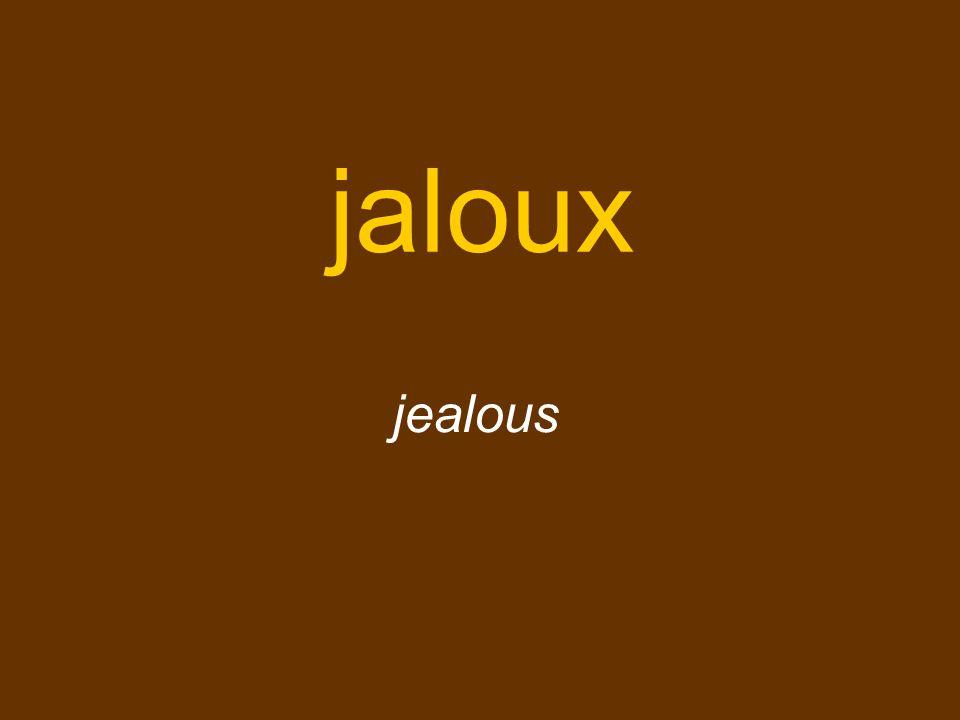 jaloux jealous