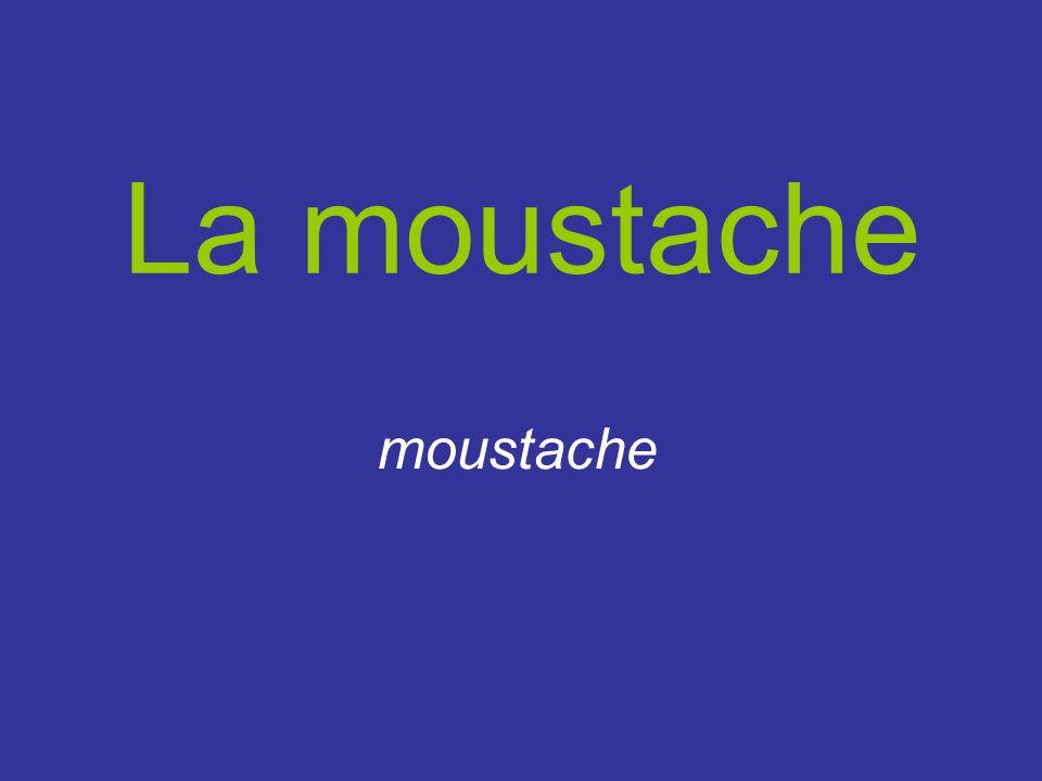 La moustache moustache
