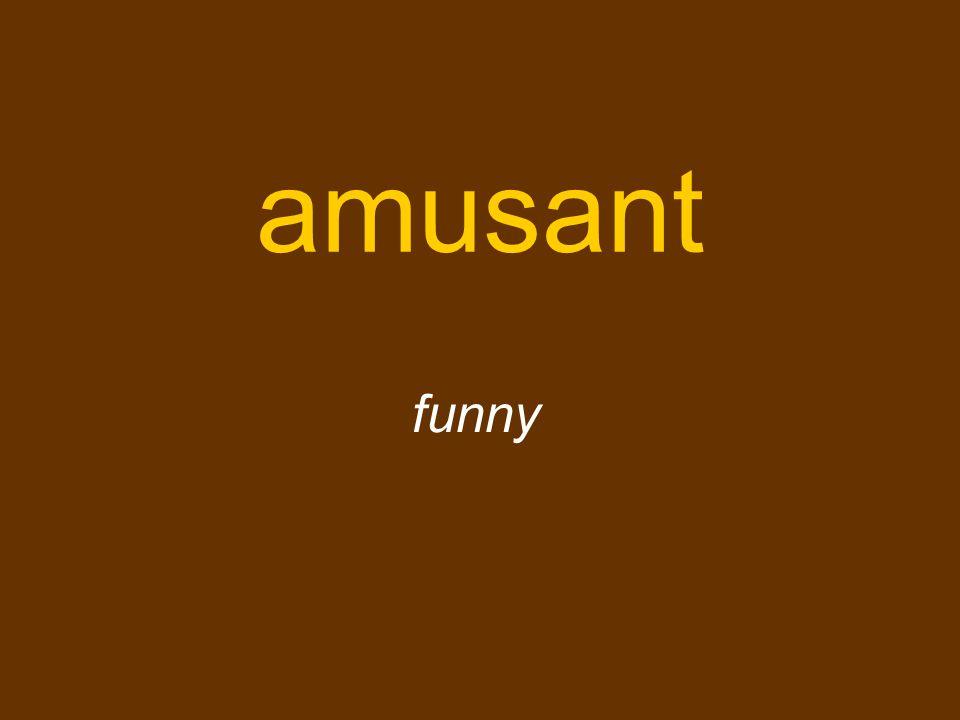 amusant funny