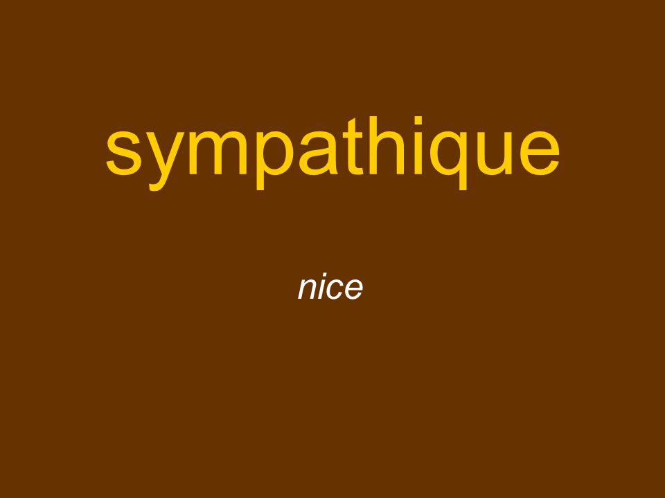 sympathique nice