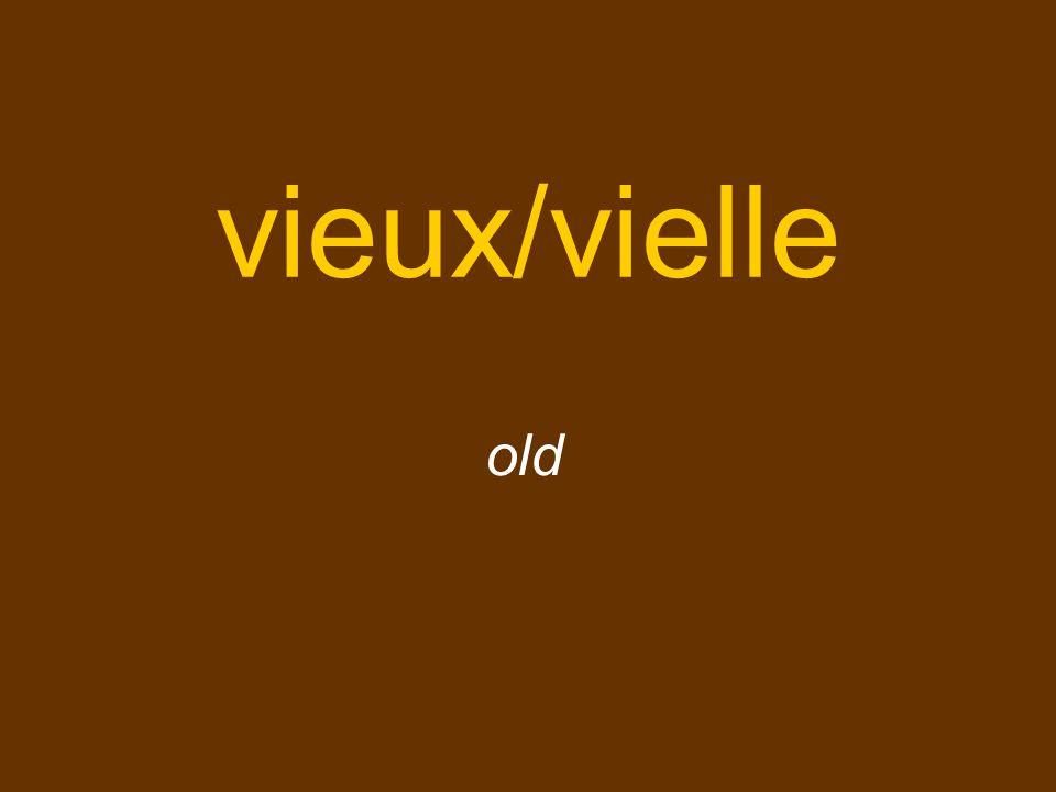 vieux/vielle old