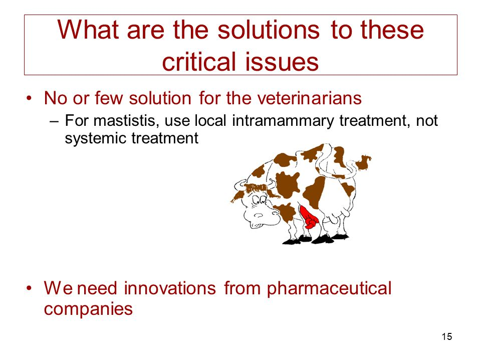 15 What are the solutions to these critical issues No or few solution for the veterinarians –For mastistis, use local intramammary treatment, not syst