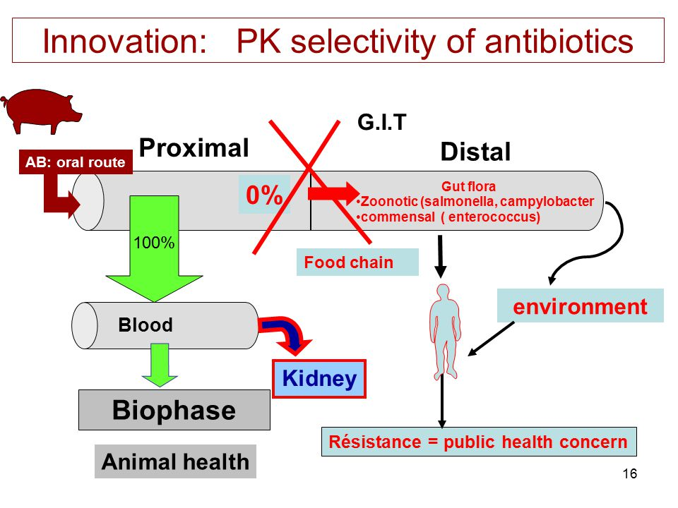 16 Innovation: PK selectivity of antibiotics environment G.I.T Proximal Distal Blood Gut flora Zoonotic (salmonella, campylobacter commensal ( enteroc