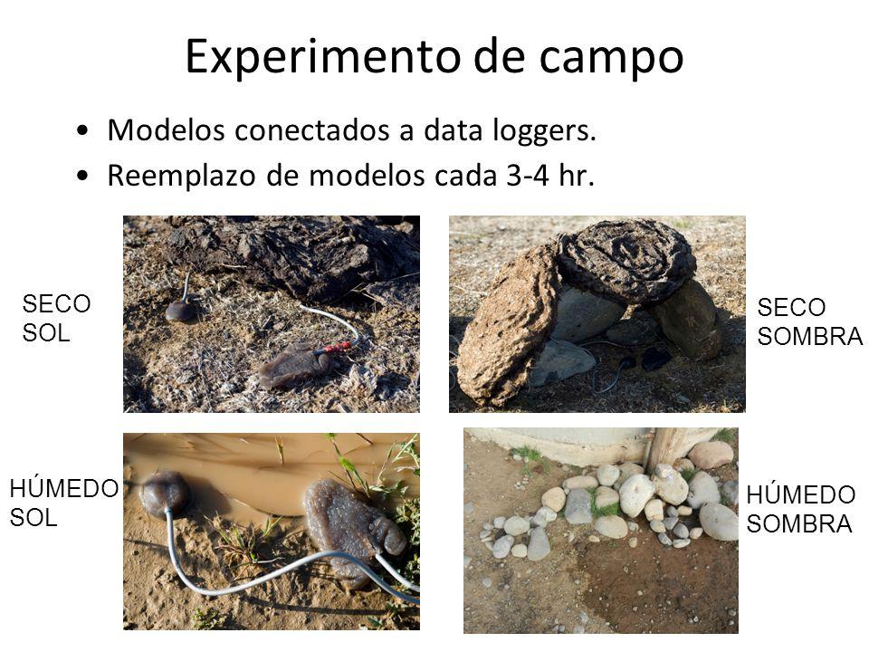 Experimento de campo Modelos conectados a data loggers.