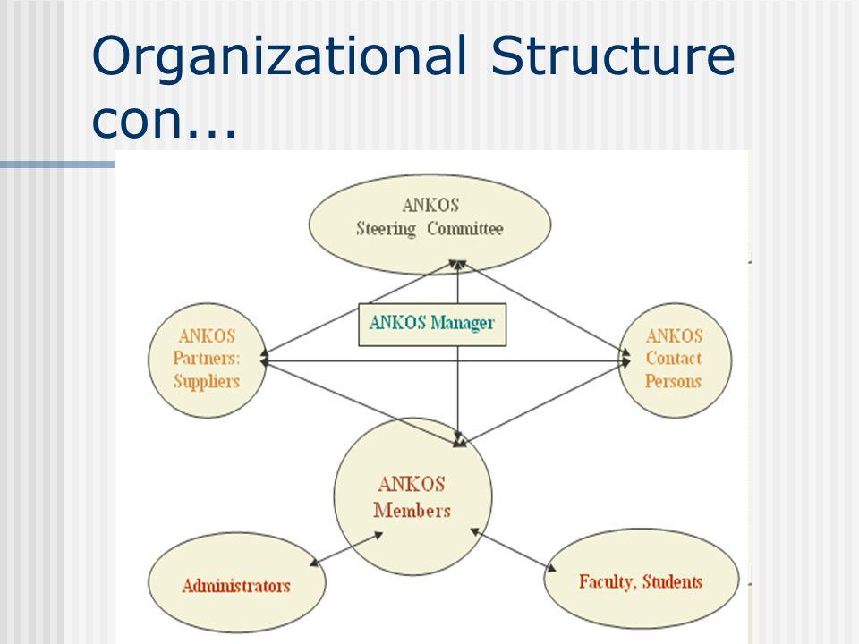 Organizational Structure con...