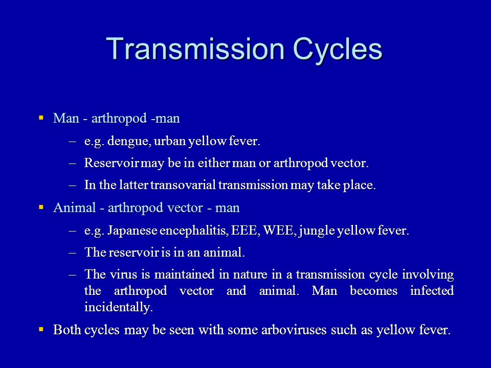 West Nile virus Japanese encephalitis virus antigenic complex (Japanese encephalitis, St.