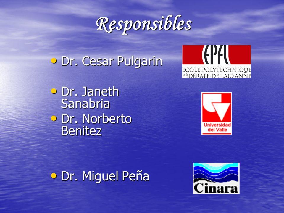 Responsibles Dr. Cesar Pulgarin Dr. Cesar Pulgarin Dr. Janeth Sanabria Dr. Janeth Sanabria Dr. Norberto Benitez Dr. Norberto Benitez Dr. Miguel Peña D
