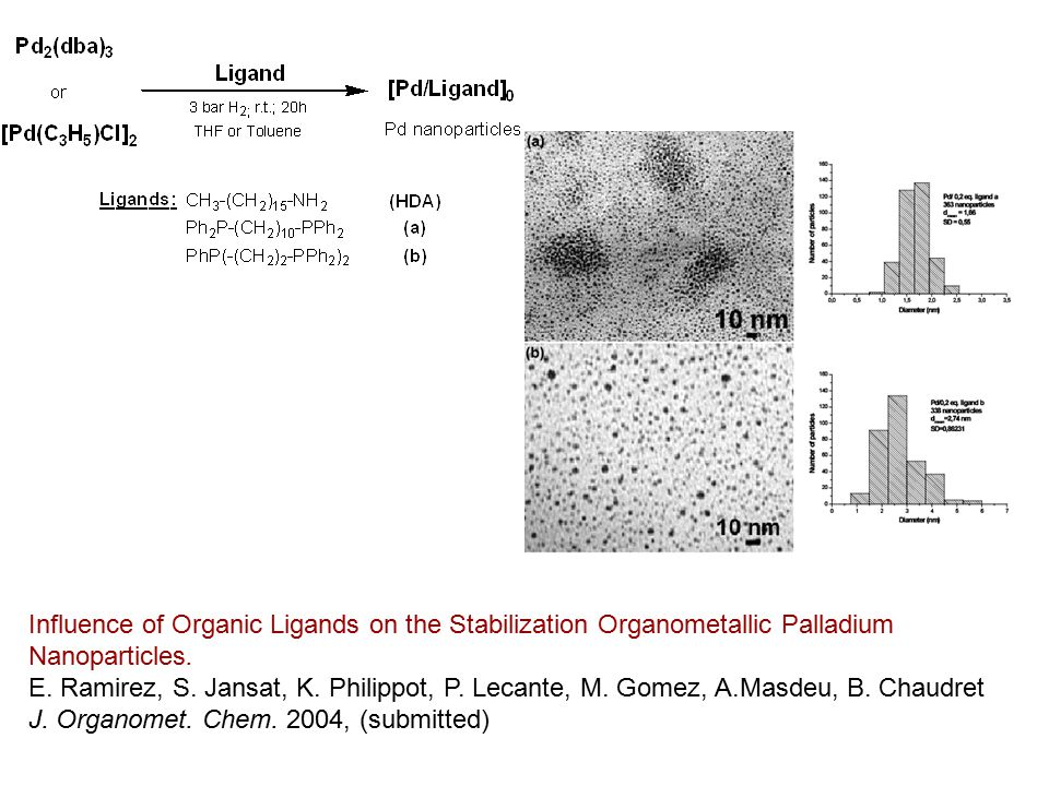 Influence of Organic Ligands on the Stabilization Organometallic Palladium Nanoparticles.