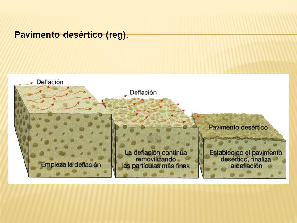 Pavimento desértico (reg).