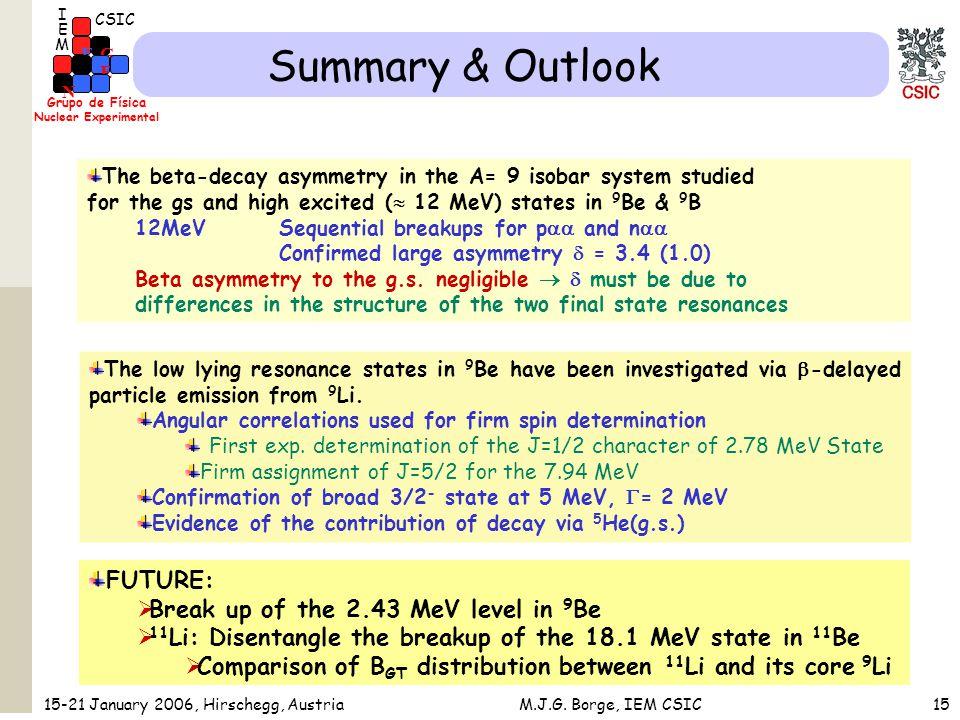 Grupo de Física Nuclear Experimental G F E N CSIC I M E 15-21 January 2006, Hirschegg, AustriaM.J.G.