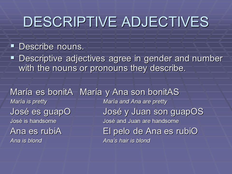 DESCRIPTIVE ADJECTIVES  Describe nouns.
