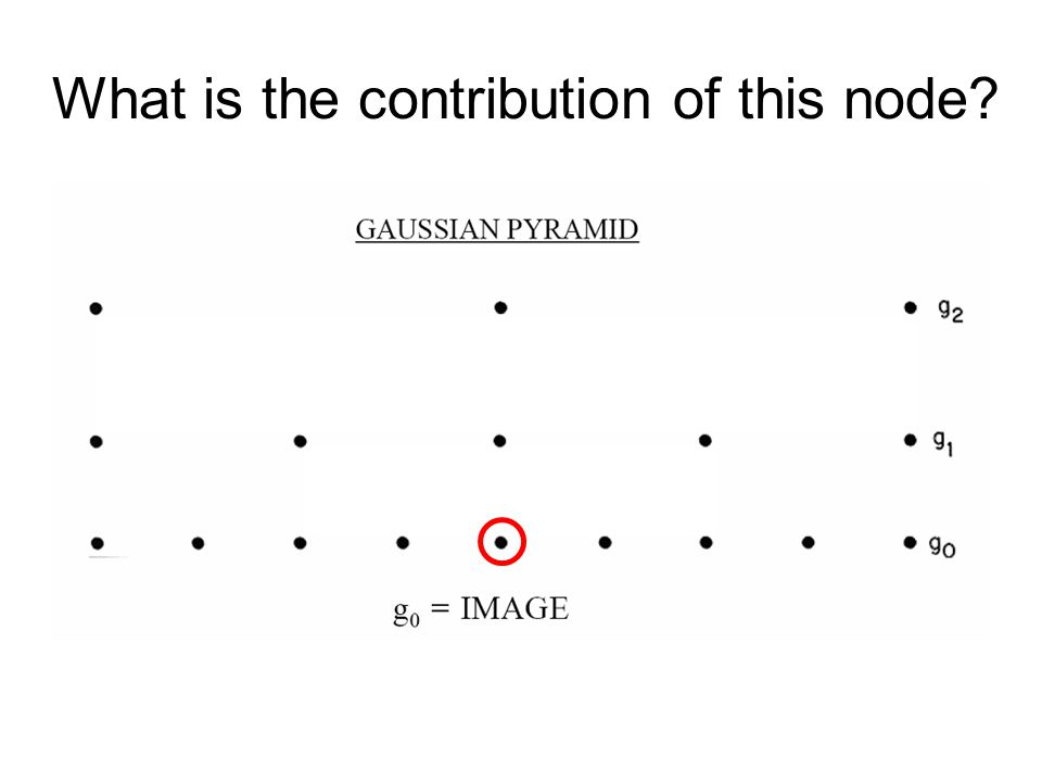 What is the contribution of this node?