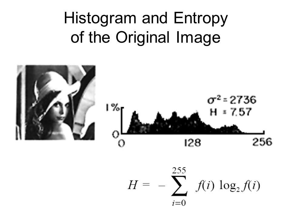 Histogram and Entropy of the Original Image