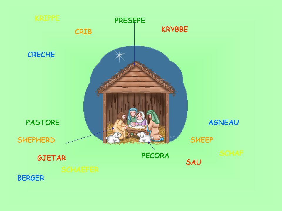 PASTORE PECORA PRESEPE CRIB SHEPHERDSHEEP KRYBBE SAU GJETAR KRIPPE CRECHE BERGER AGNEAU SCHAEFER SCHAF