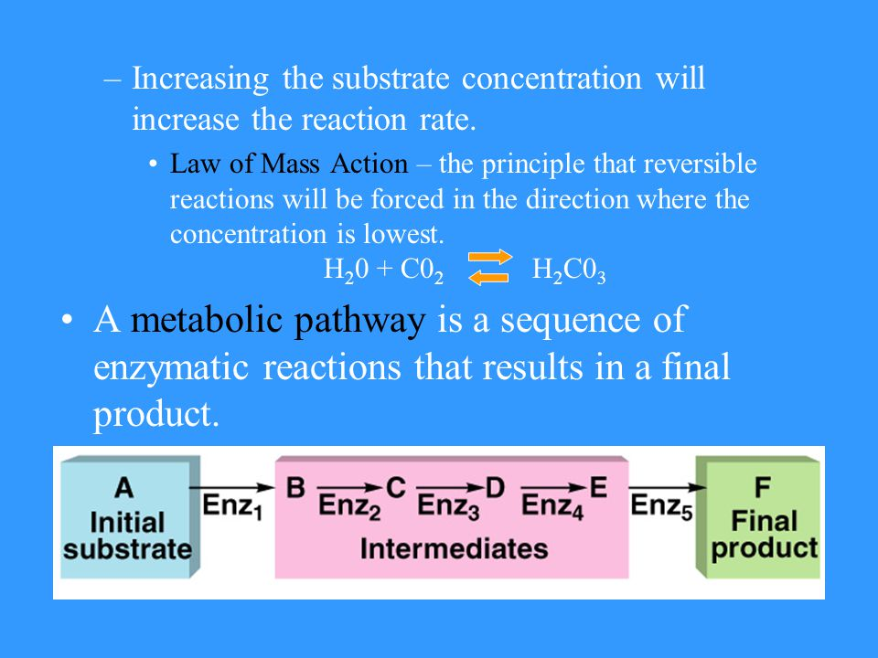 –Increasing the substrate concentration will increase the reaction rate.