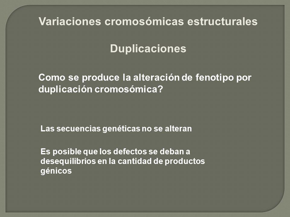Variaciones cromosómicas estructurales Duplicaciones Como se produce la alteración de fenotipo por duplicación cromosómica? Las secuencias genéticas n